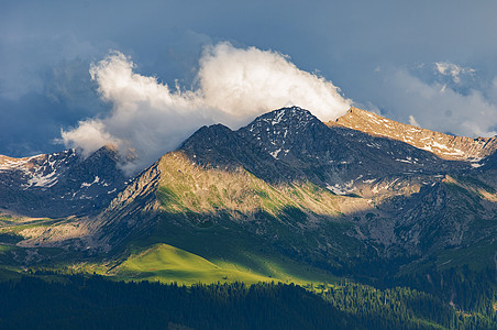 新疆特克斯草原雪山森林图片