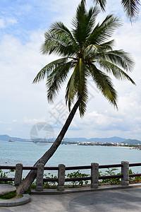 三亚-天涯海角图片