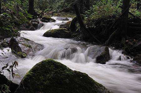 小溪风光素材图片