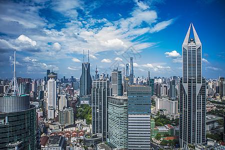 上海城市丛林图片
