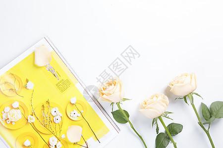玫瑰花白色背景素材图片