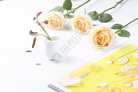 玫瑰花场景图片