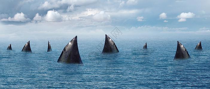 大海里的鲨鱼图片
