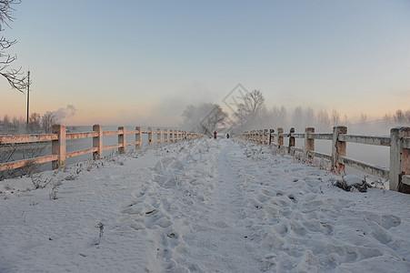 新华桥 雾凇图片