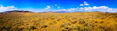 美国国家公园的路边景色图片