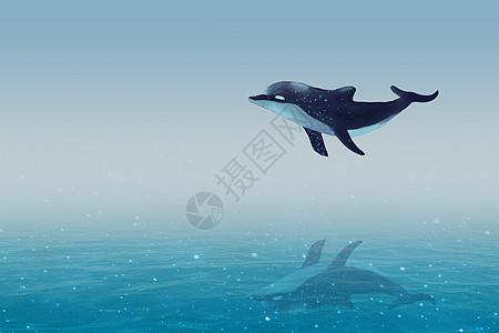 星空游荡的鲸鱼图片