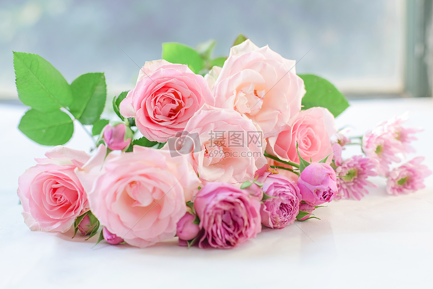七夕粉红色爱情玫瑰花图片