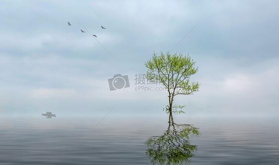 意境中的树与飞鸟图片