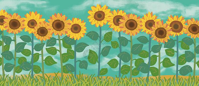 向日葵花从图片