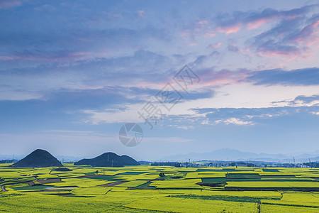 云南罗平县油菜花海晚霞图片