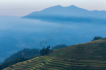 湖南紫鹊界梯田云海自然美景图片