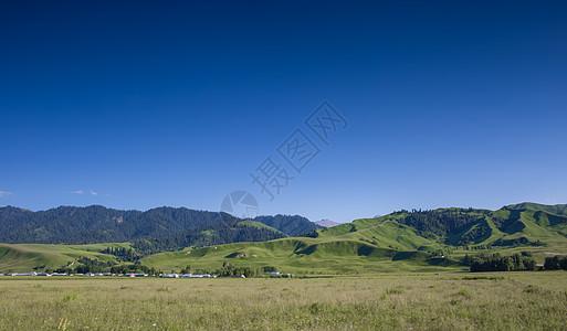 新疆那拉提草原美景图片