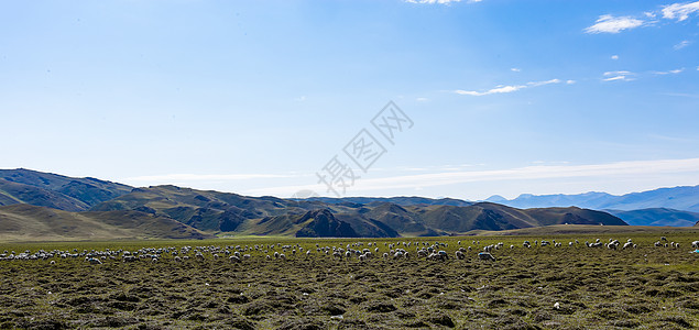 新疆独库公路两旁美景图片