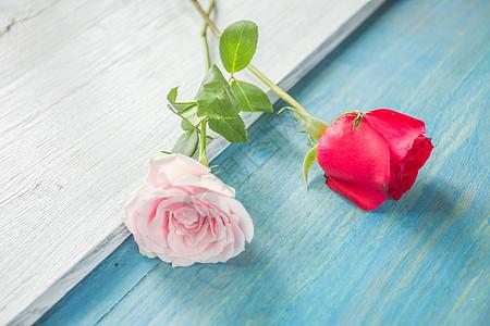 浪漫玫瑰图片