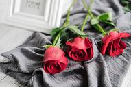 红色玫瑰花朵图片
