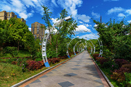 城市公园绿道图片