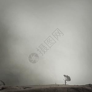 云雾中的山图片