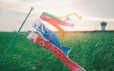 夕阳下的草原和鲤鱼旗图片