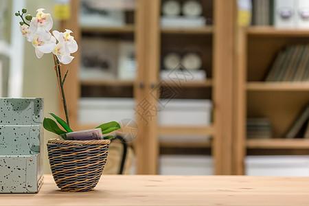小清新桌面盆栽图片