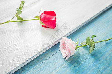 两支玫瑰花图片