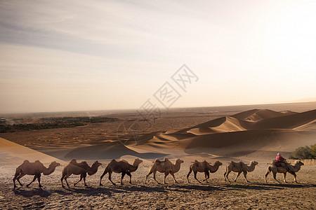 沙漠旅行剪影图片