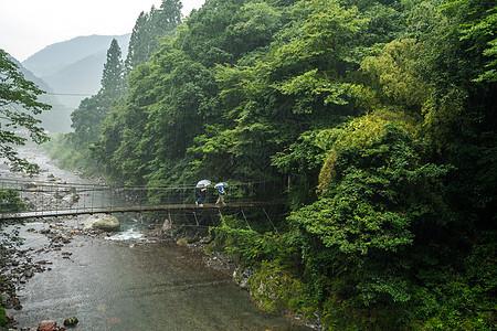 山林里的吊桥图片
