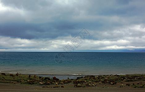 新疆赛里木湖图片