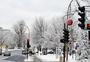 冬日下雪后的城市街头图片