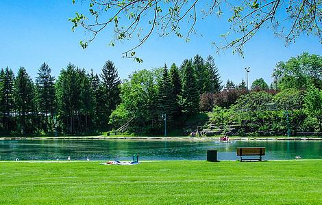 国外的公园草坪河边图片