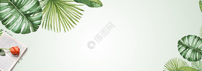 清新花朵绿叶背景图片