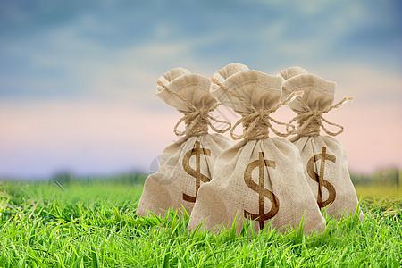 蓝天草地上的钱袋图片