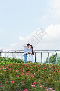 情人节花园情侣拥抱图片
