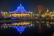 上海迪士尼夜景——旋转木马图片