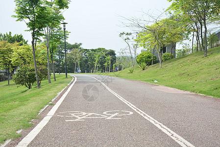 深圳中心公园图片