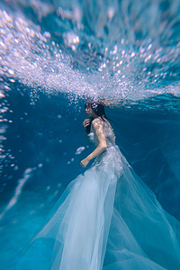 水下摄影《花》图片