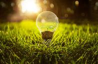 创意环保灯泡图片