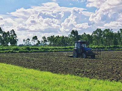 田间劳动的农民图片