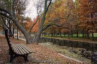 森林公园河边座椅图片