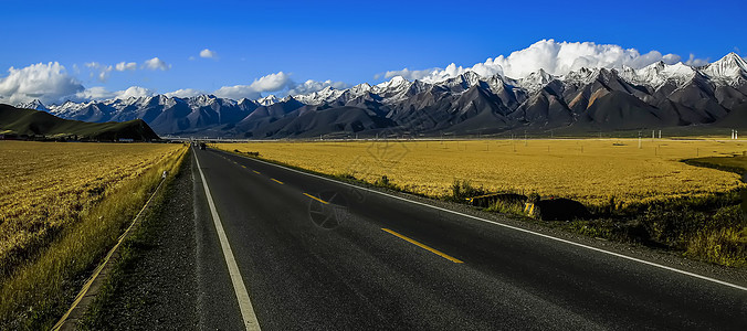 青海门源雪山下的公路图片