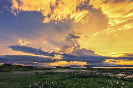 公园湿地夕阳图片