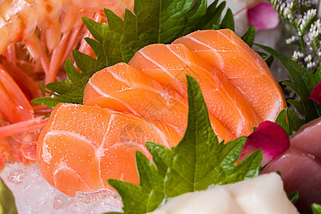 三文鱼刺身图片