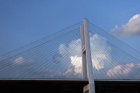 上海好天气下的南浦大桥图片