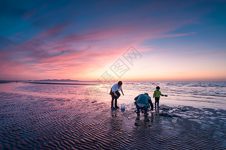 夕阳海滩上赶海的一家三口图片