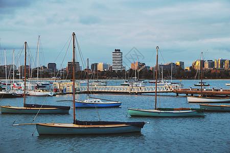 澳大利亚墨尔本港湾的帆船图片