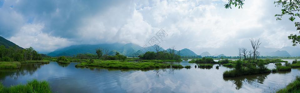 大九湖湿地旅游风景图片