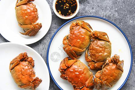 美味大闸蟹螃蟹背景素材图片