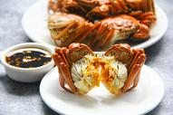 美味大闸蟹螃蟹蟹黄背景素材图片