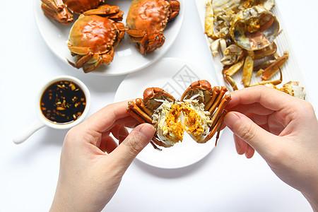 美味大闸蟹螃蟹蟹黄白底背景素材图片