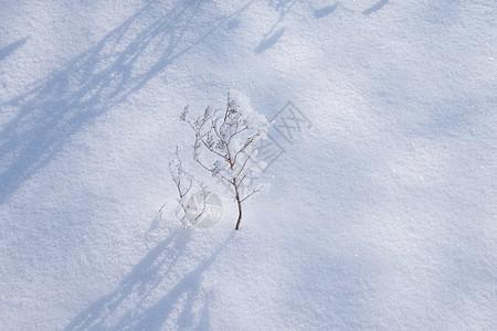 冬天雪地纹理素材图片