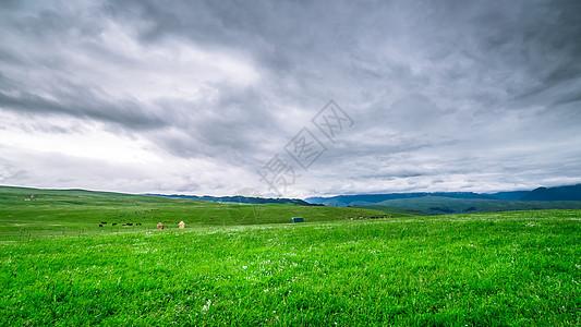 新疆喀拉峻大草原图片